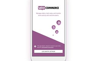 Loja Virtual WooCommerce em Curitiba